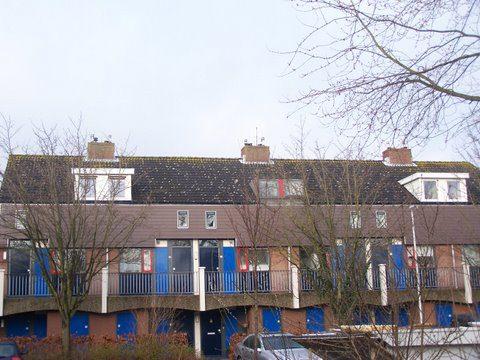 Verhoef-Dakramen-project-Project vervangen dakkapellen Leiderdorp-929565